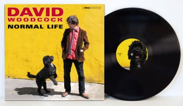 REVIEW: David Woodcock – Normal Life album review