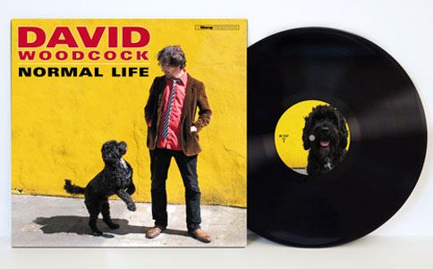 REVIEW: David Woodcock – Normal Life album review